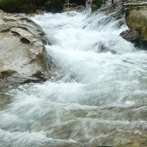 Fluss1-198x95